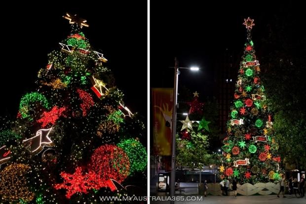 Новогодняя елка на Мартин Плейс