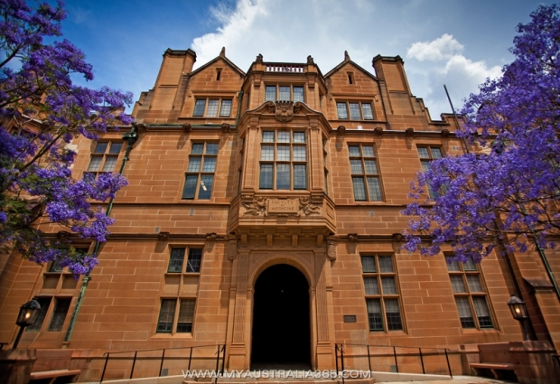 Медицинский факультет Университета Сиднея