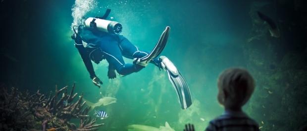 океанариум в Сиднее куда пойти с детьми в Сиднее