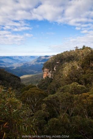 Что посмотреть в Сиднее Голубые горы
