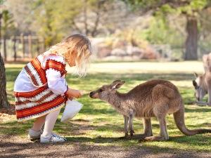 10 плюсов Автралии или почему вам захочется приехать в Австралию