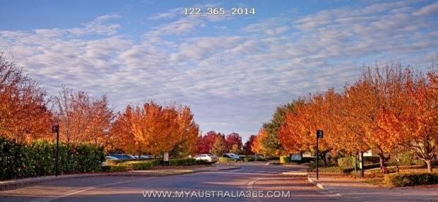 Осень в Охотничьей Долине  Hunter Valley