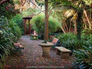 Парк камелий Camellia Garden в Сиднее