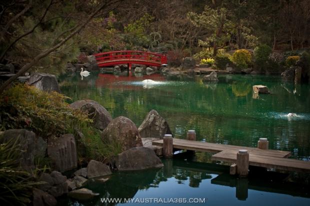 Японский сад в Сиднее