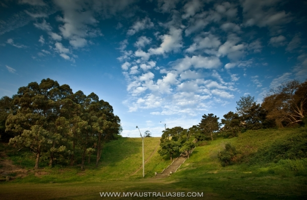 Купер Парк Cooper Park в Сиднее