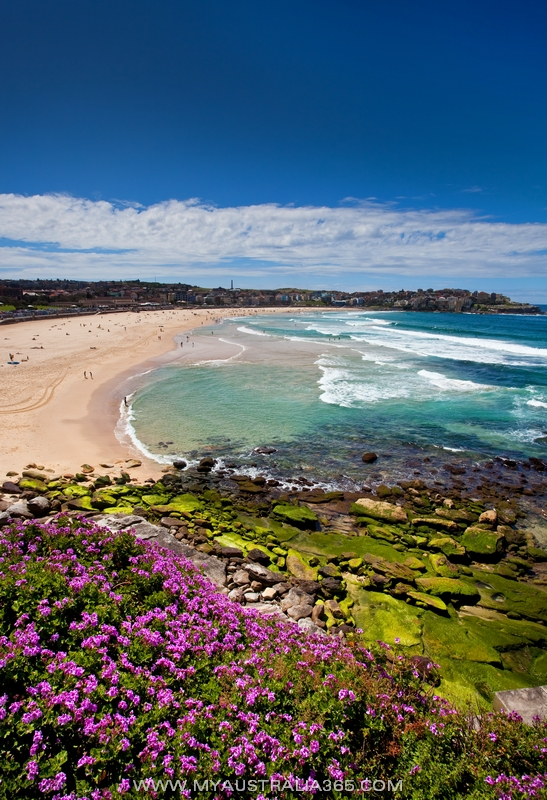 Знаменитый пляж Бондай Бич Bondi Beach