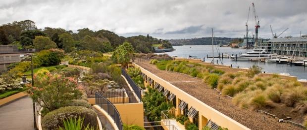 Зеленые крыши в Сиднее
