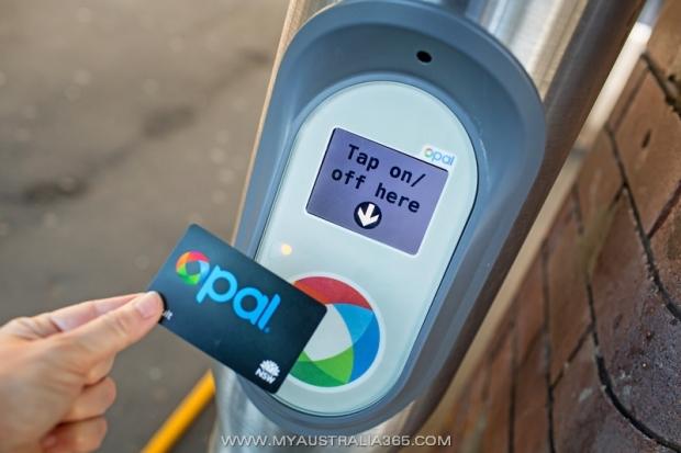 Система оплаты проезда на общественном транспорте opal в штате NSW