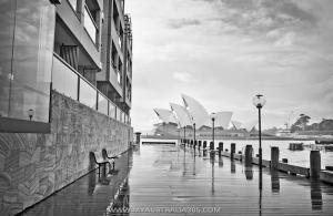 Плохой Сидней у блоггера Варламова